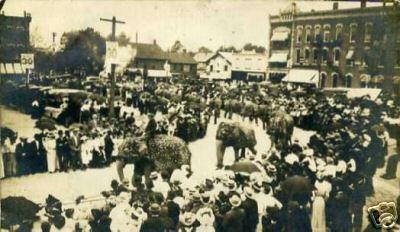 Elephants on Parade in Washington Square in Bucyrus, Ohio